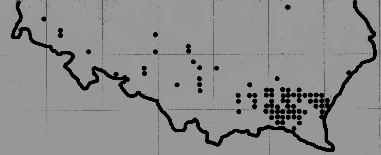 klokoczka mapa