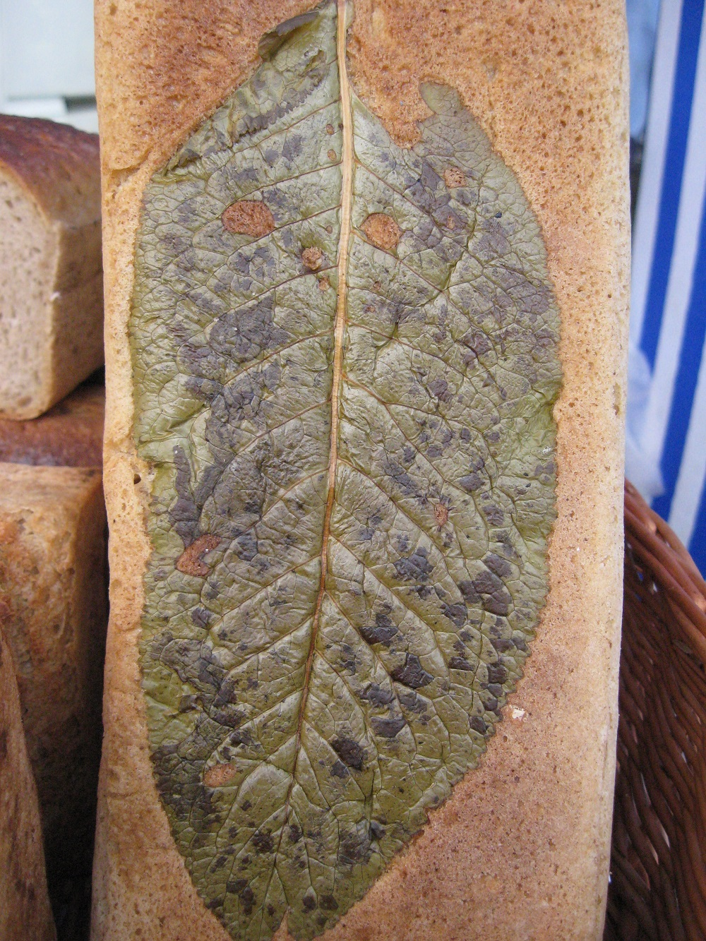 chleb na chrzanie