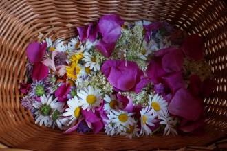 kwiaty do sypania DSC05135