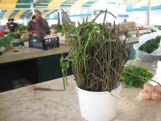 asparagus i tamus IMG_7480