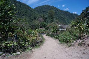 Migawki z Gór Qinling