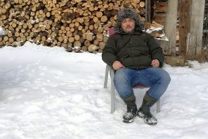 Czy można wysiewać łąkę kwietną zimą?